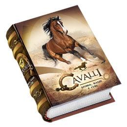 CAVALLI-01IT