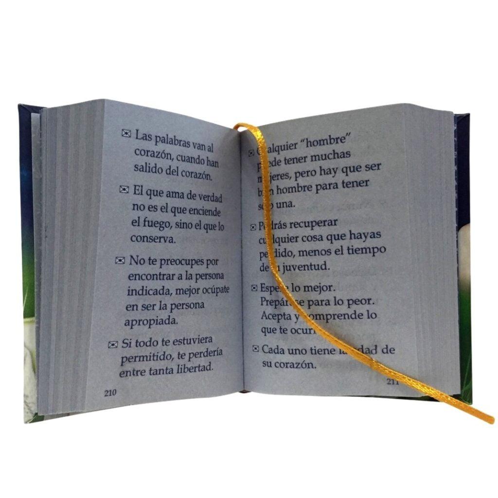 1100-mensajes-de-texto-1-miniature-book-libro