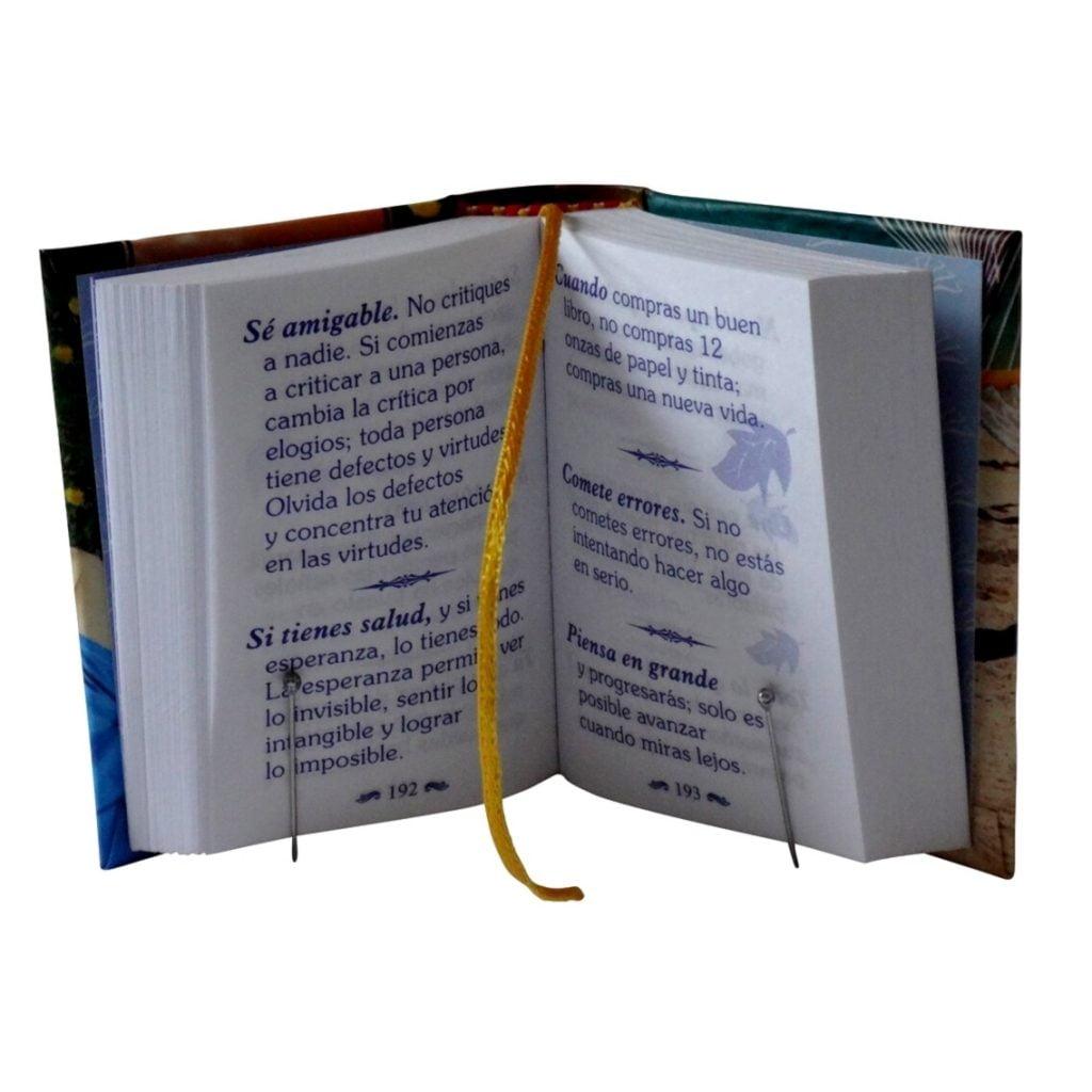 900_maneras-hacer-placentera-tu-vida-1-miniature-book-libro
