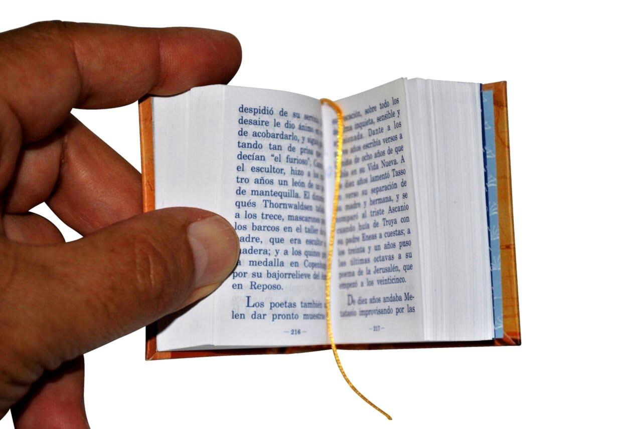 Edad_de_oro_2-miniature-book-libro
