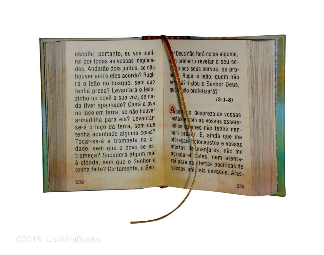 encinas_da_biblia_1-miniature-book-libro