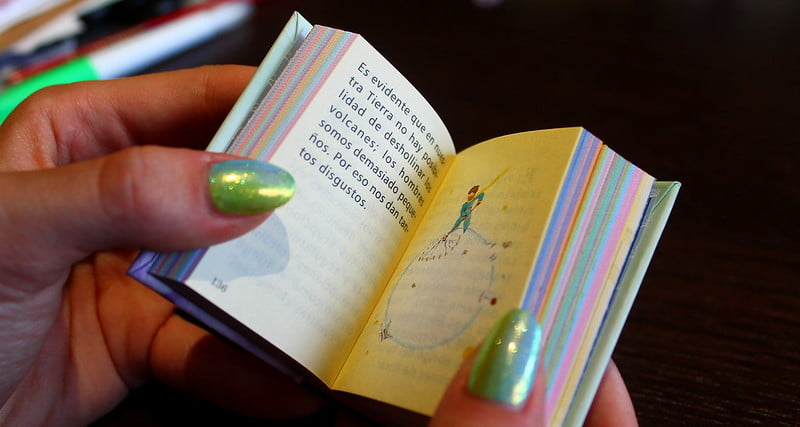 Principito Miniatura Book 5